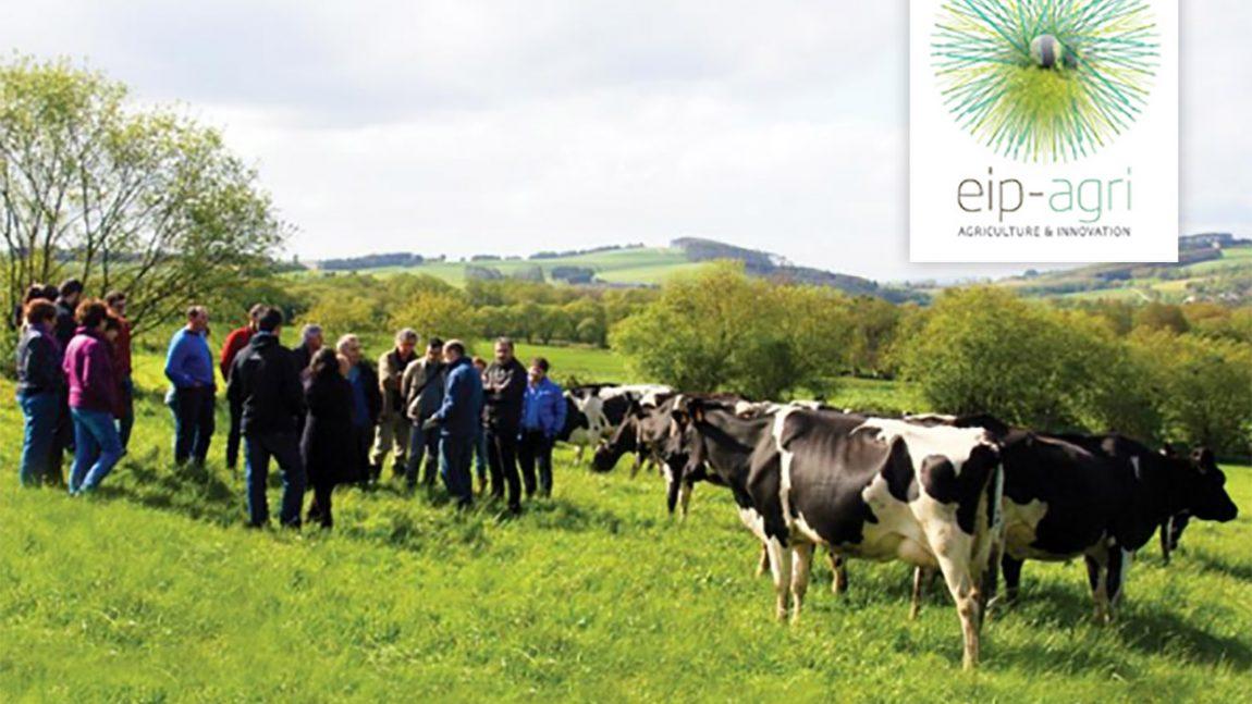 Profitability of Permanent Grassland (EIP-AGRI)