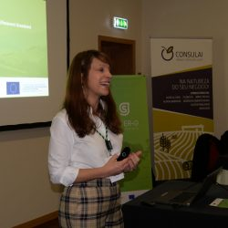 2nd Portuguese Co-innovation Workshop – CONSULAI