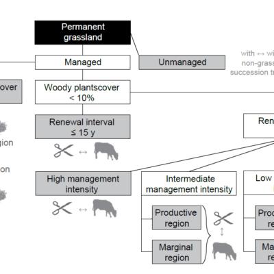 A management-based typology for European permanent grasslands