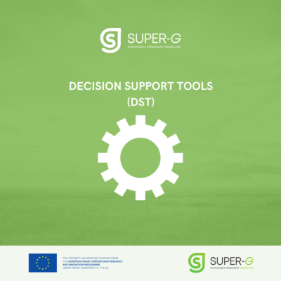 Decision Support Tools Report
